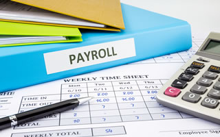 Professional Payroll Services in Victoria BC